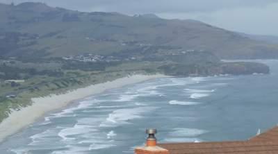 dunedin's main beach