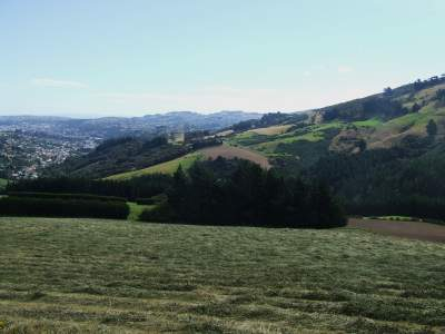 Dunedin from Norwood