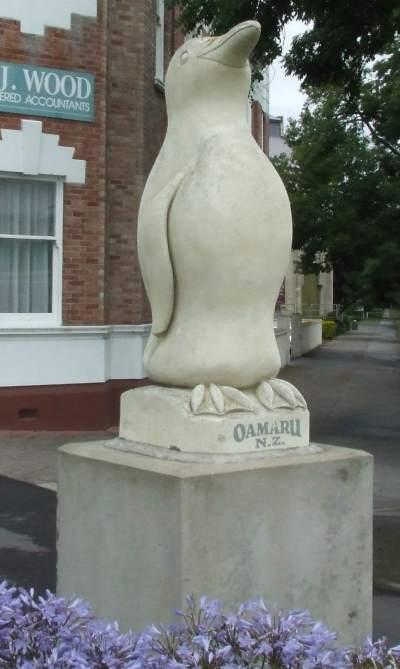 Oamaru penguin